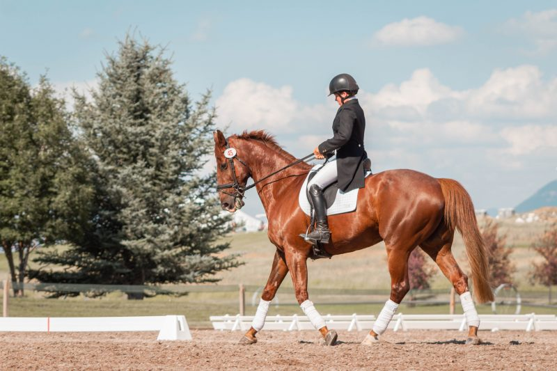 Persona cabalga caballo