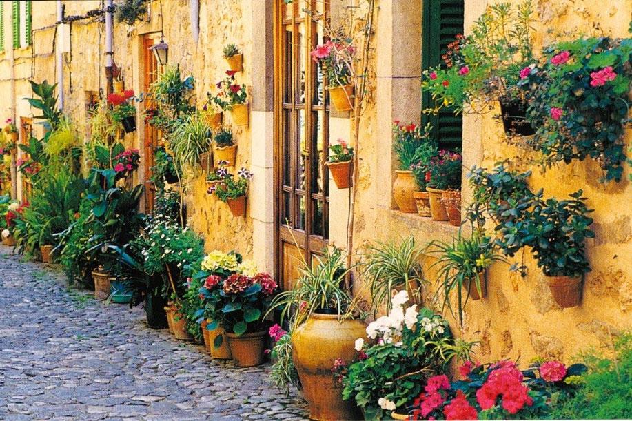 Primavera en Valldemossa Mallorca