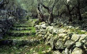 ruta-pedra-en-sec