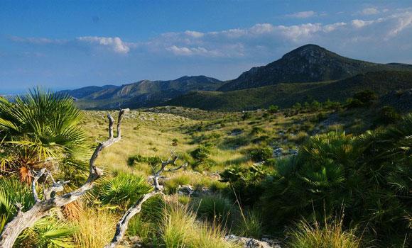 parque natural de la península de Llevant